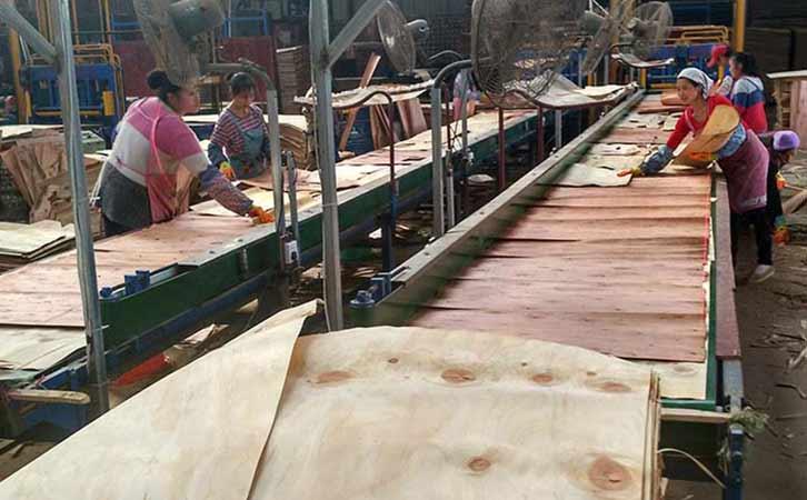 镜面木胶板生产中