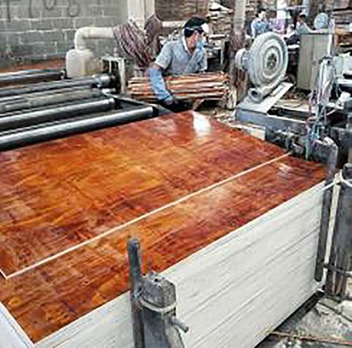 高质量建筑胶合板生产